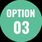 OPTION01