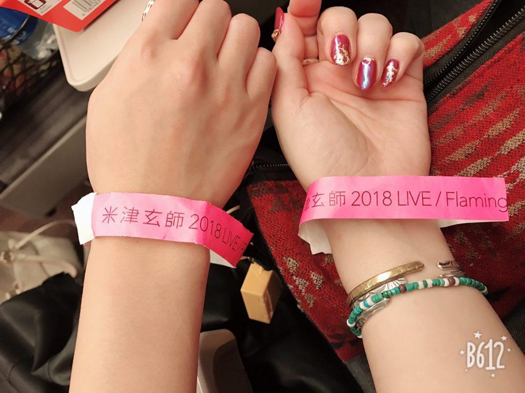 米津玄師 2018 LIVE Flamingo 幕張メッセへ行ってきた!