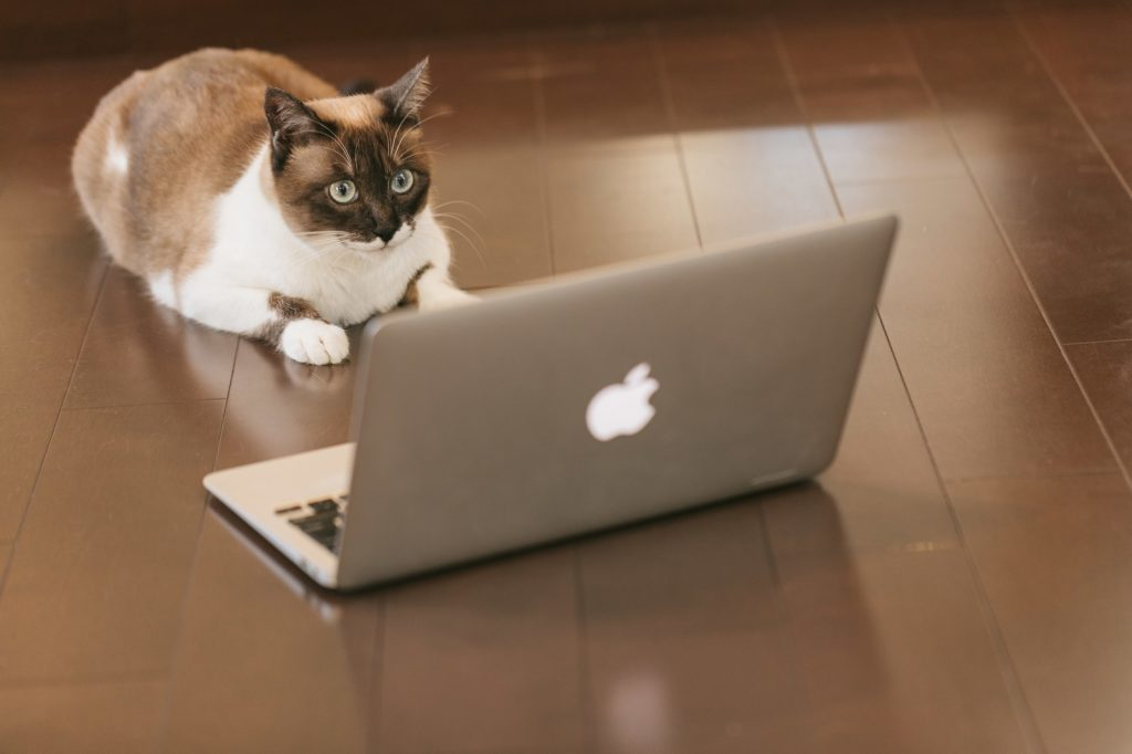 【HP制作】ホームページって大事!ということを伝えたい