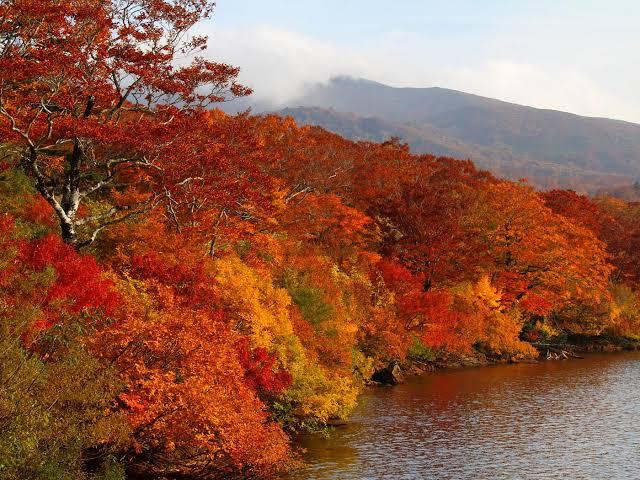 【岩手】【錦秋湖】【湯川温泉】  オススメ紅葉スポットと温泉
